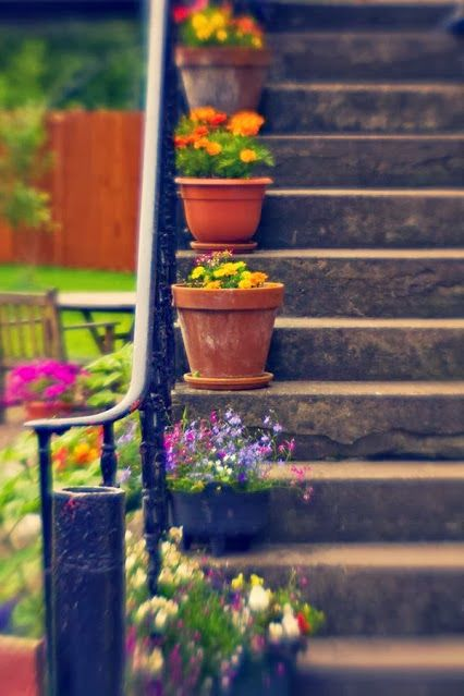 summer-containers-steps-