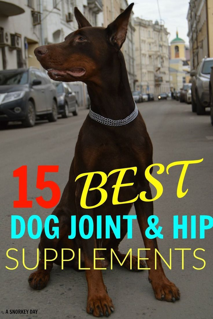 15 Best Dog Joint Hip Supplements Medical For Pets Best Dogs