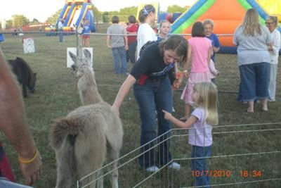 A Fall Festival. We offer a petting zoo, pony rides, pony hops, inflatable bounce house with slide, event tent, popcorn, snow cones and hot dogs.  We will travel within