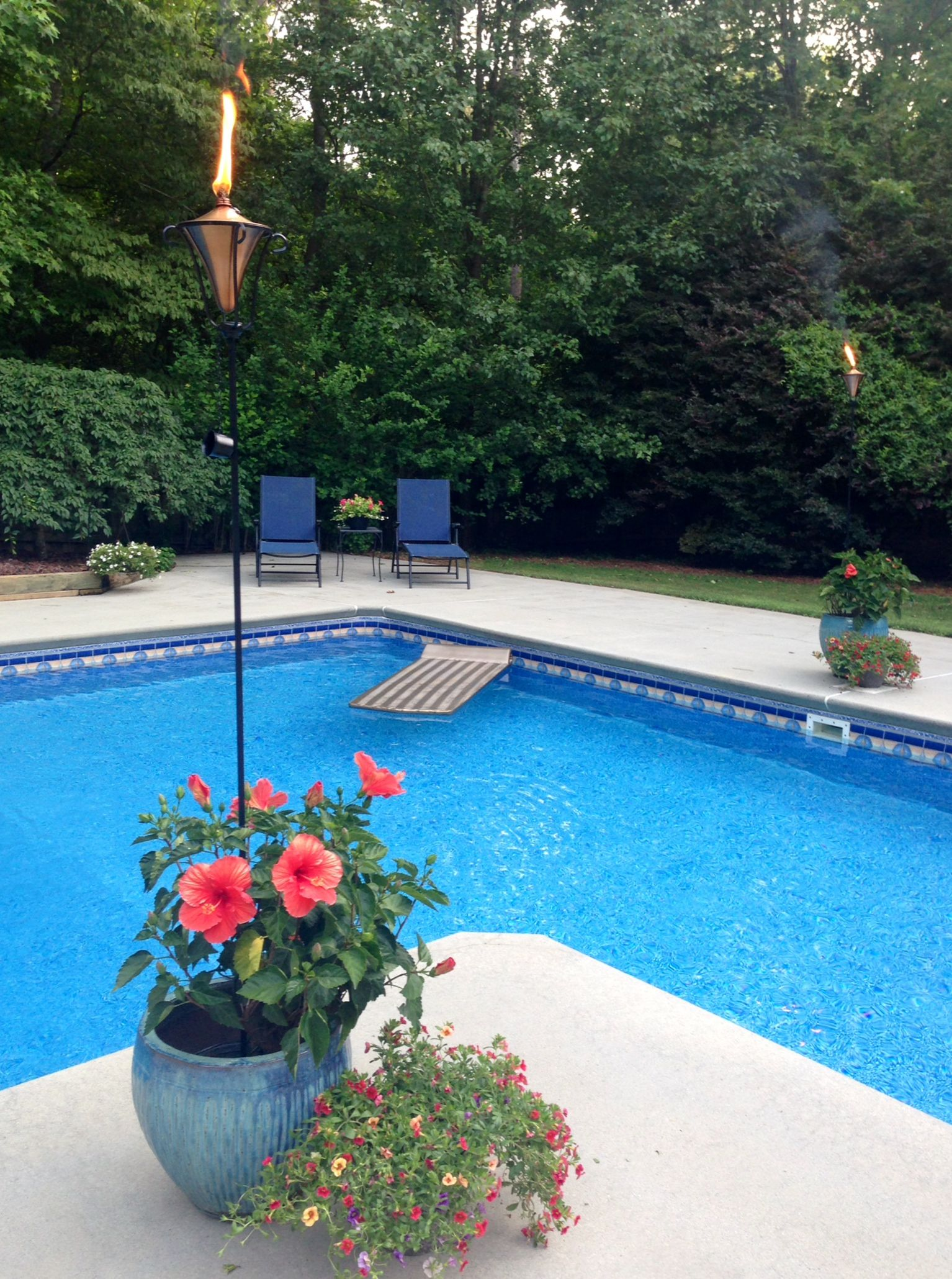 Tiki torches in the flowers around the pool inground for Garden pool landscaping