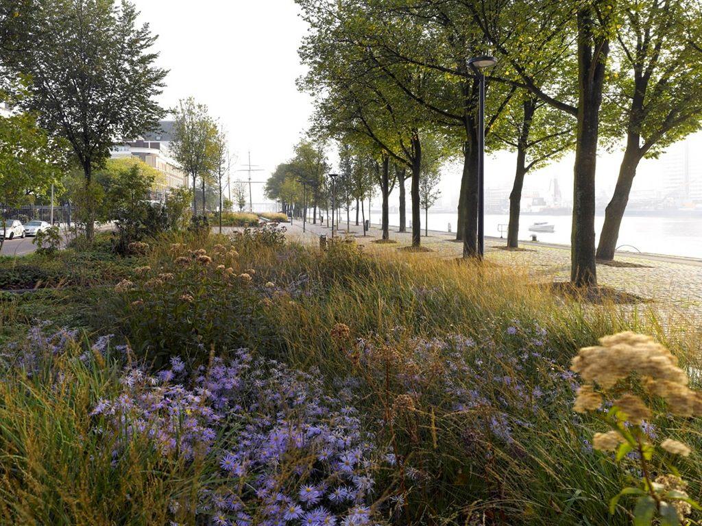 Oudolf.com - Piet Oudolf - Gardens - Public gardens - Westerkade ...