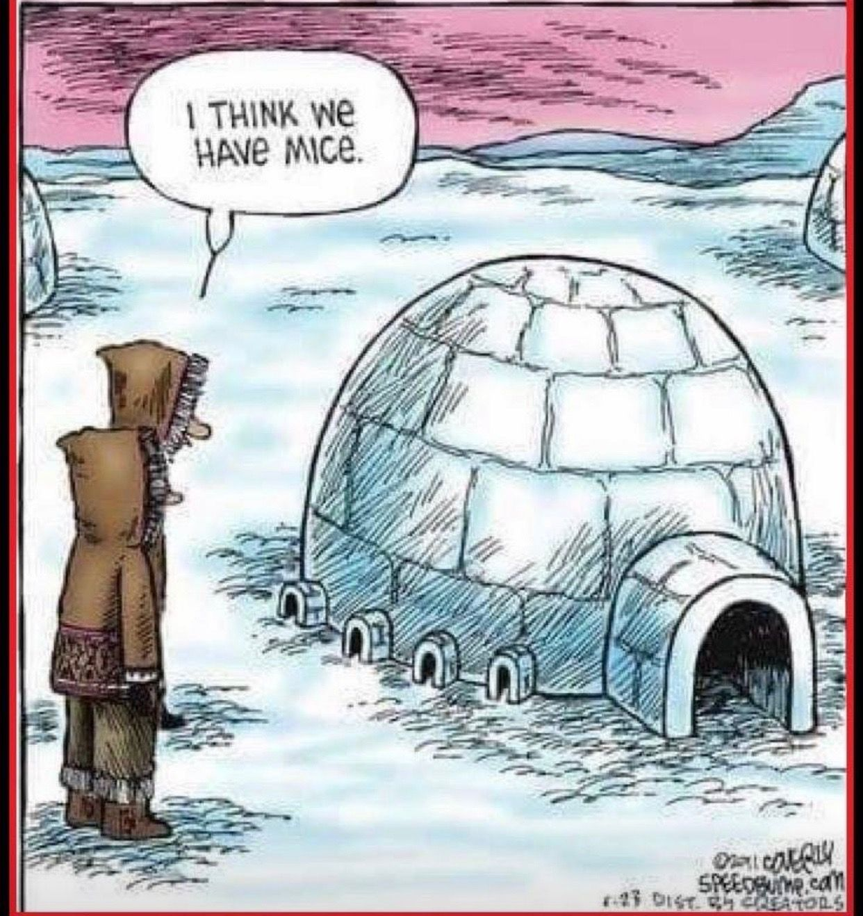 Igloo funny Cartoon jokes, Funny comics, Funny cartoons