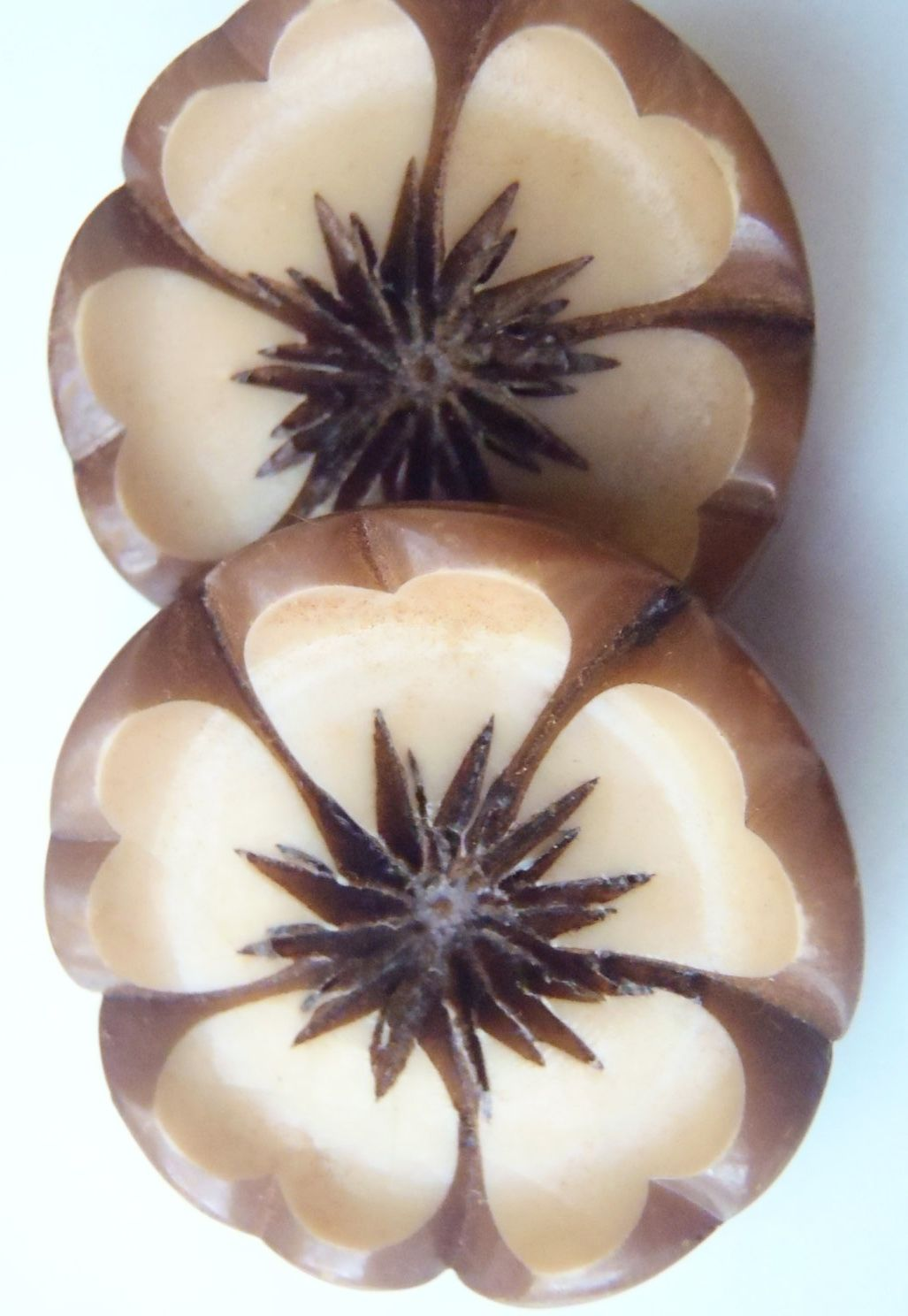 Beautifully carved, vintage, floral buttons.