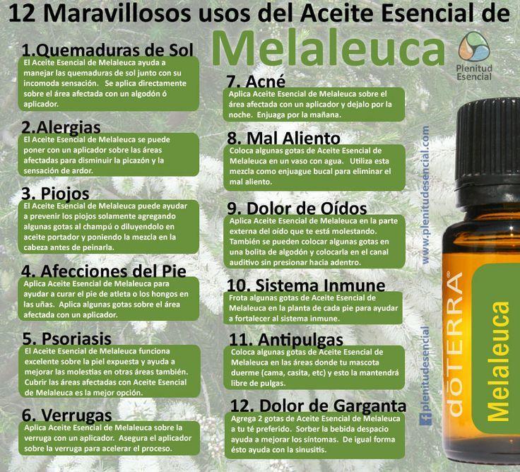 12 maravillosos usos del aceite esencial de melaleuca for Aceites esenciales usos