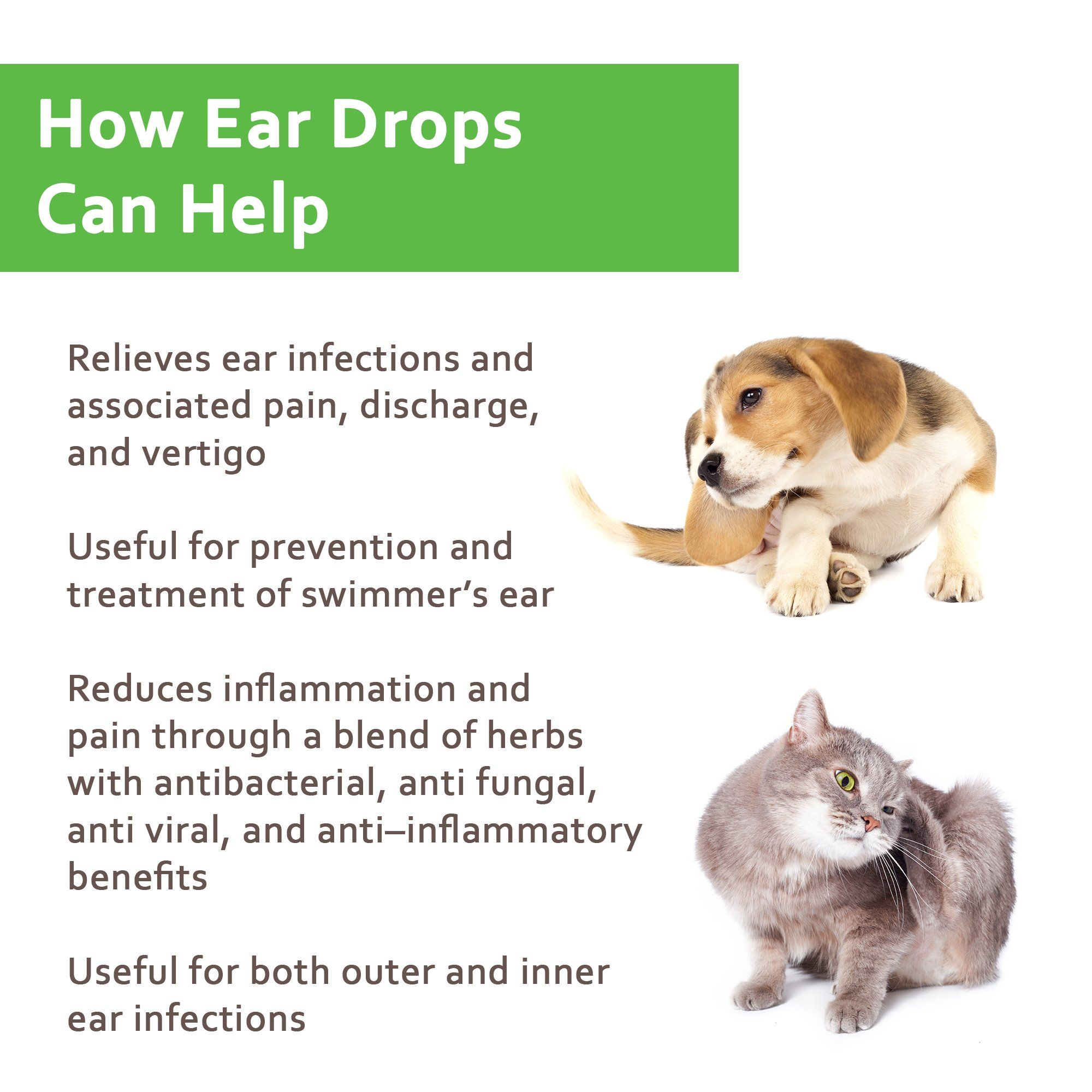 Naturpet Ear Drops Natural Ear Infection Medicine For Dogs Ear Mites Cats Dog Ear Cleaner Cat Ear Cleaner Helps Ear Drops For Dogs Dog Ear Mites Ear Drops