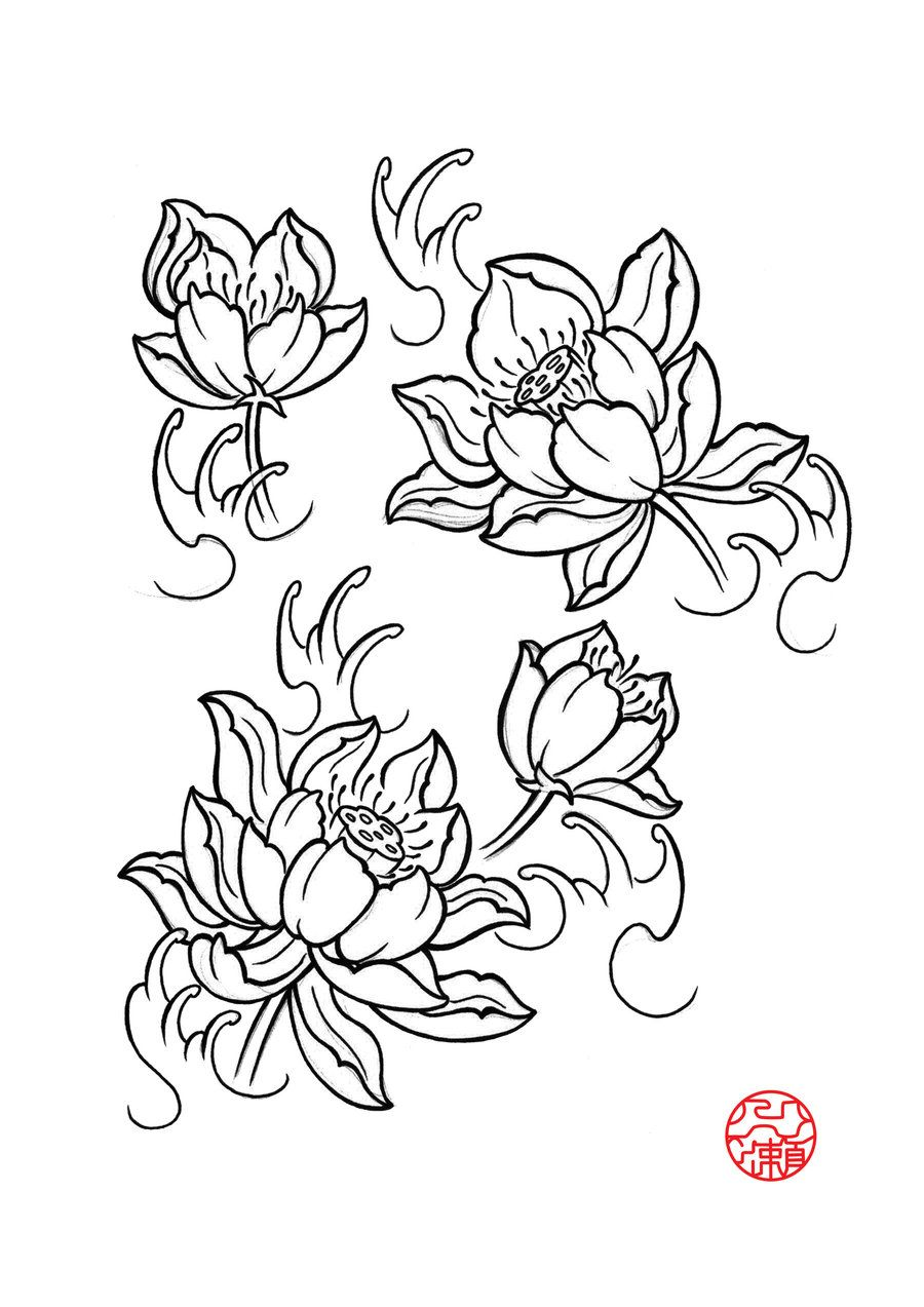 Lotus flower drawings for tattoos lotus flower by laranj4 on lotus flower drawings for tattoos lotus flower by laranj4 on deviantart izmirmasajfo
