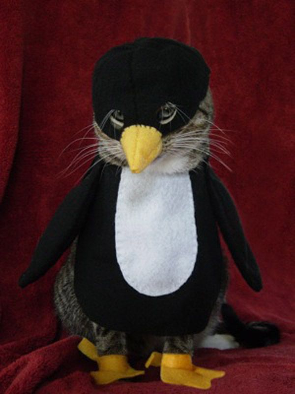 I know this one looks like itu0027s just a dumb penguin but itu0027s actually a CAT dressed as a penguin. | The 57 Greatest Pet Costumes EVER & I know this one looks like itu0027s just a dumb penguin but itu0027s ...