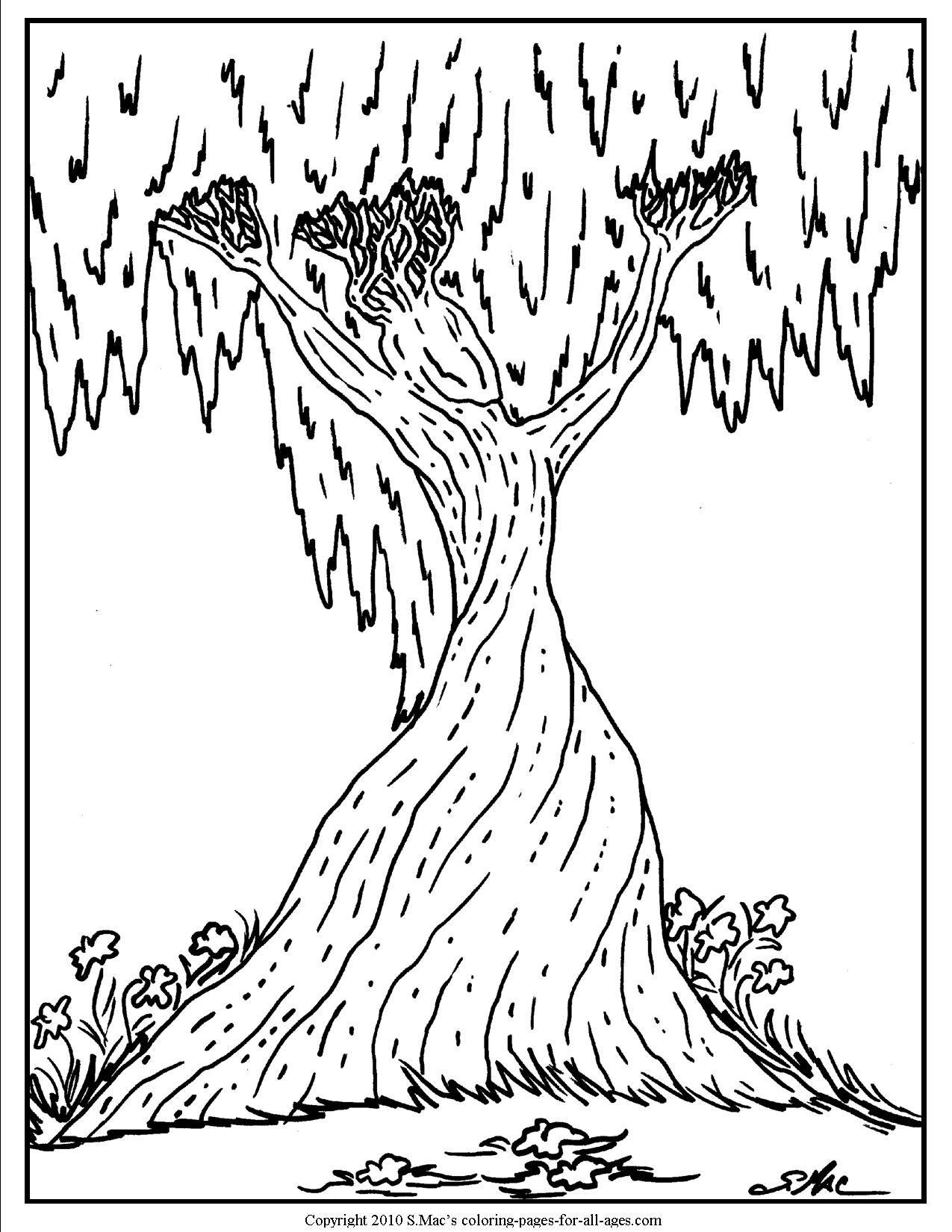 Ausmalbilder Pferd Spirit : Tree Spirit Woman Jpg 1275 1650 Adult Coloring Pages Pinterest
