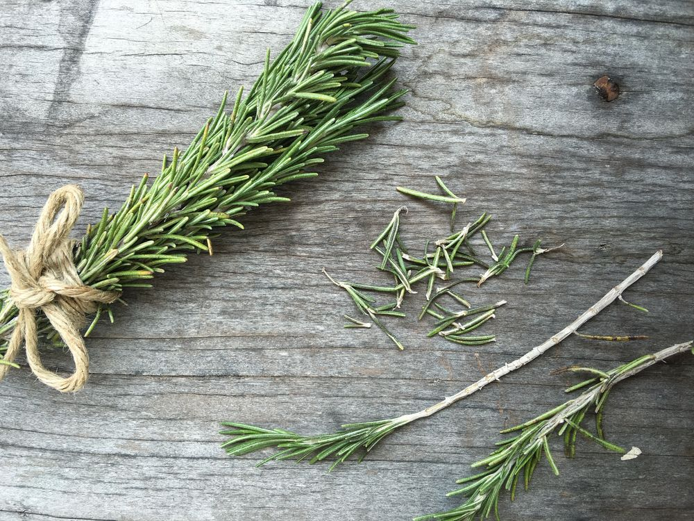 Rosemary History Nutrition Facts Health Benefits Side Effects And Fun Facts Nutrition Facts Rosemary Fun Facts
