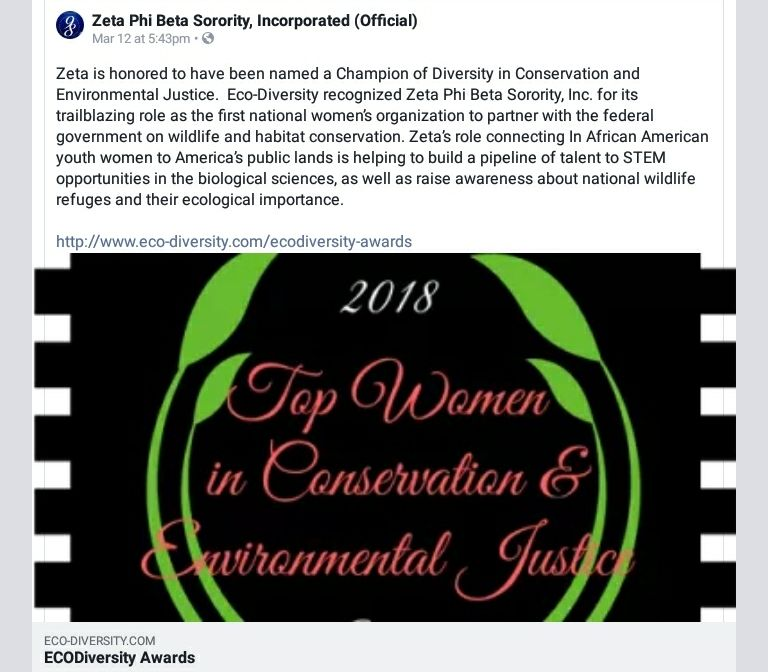 Zeta is honored to have been named a Champion of Diversity
