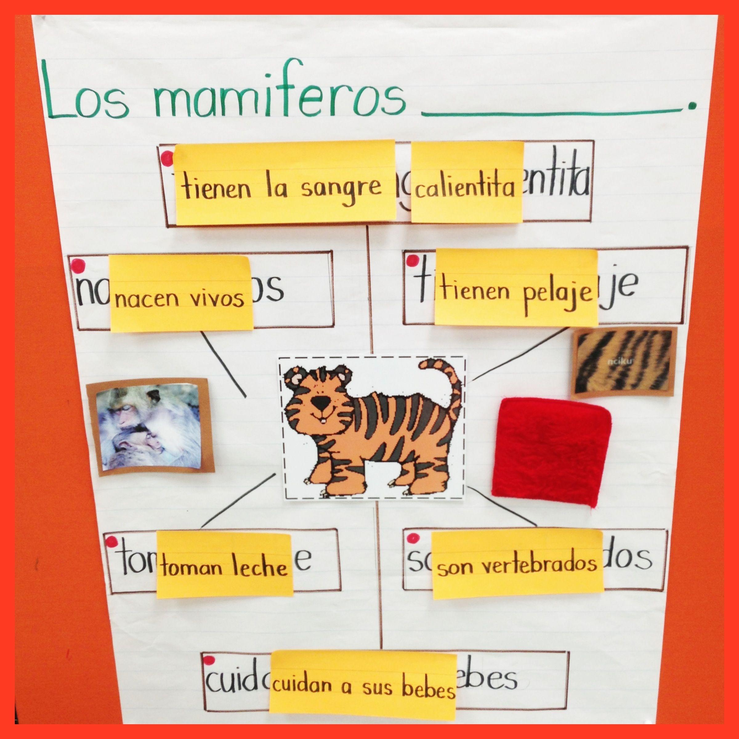 Mammals Input Chart