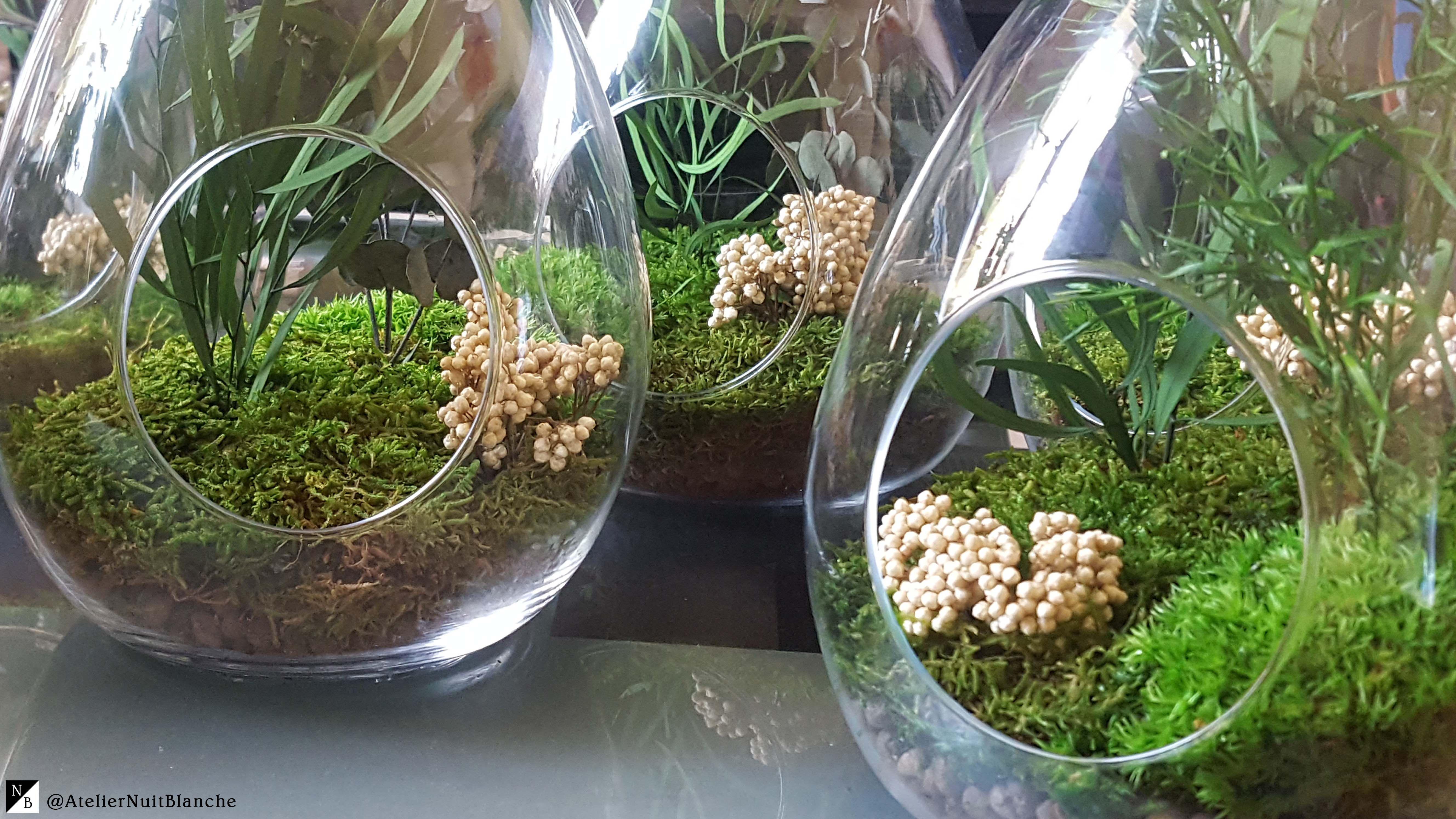 Il s'agit de végétaux naturels qui ont été figés à un certain stade de leur croissance. Le ...