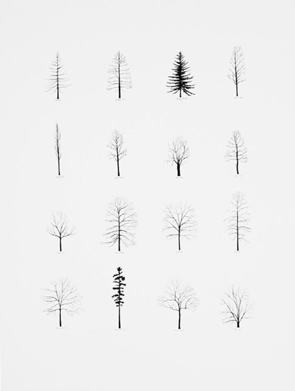 Pine Tree Line Drawing : drawing, (Step, Image, Guides), Geometric, Trees,, Drawing,, Drawing, Simple