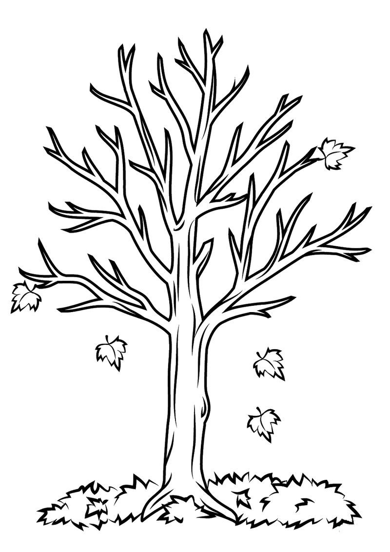 Bare Tree Coloring Page Easy Tree Coloring Page Fall Coloring
