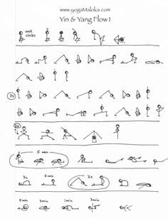 yin yoga  googlesøk  yin yoga sequence