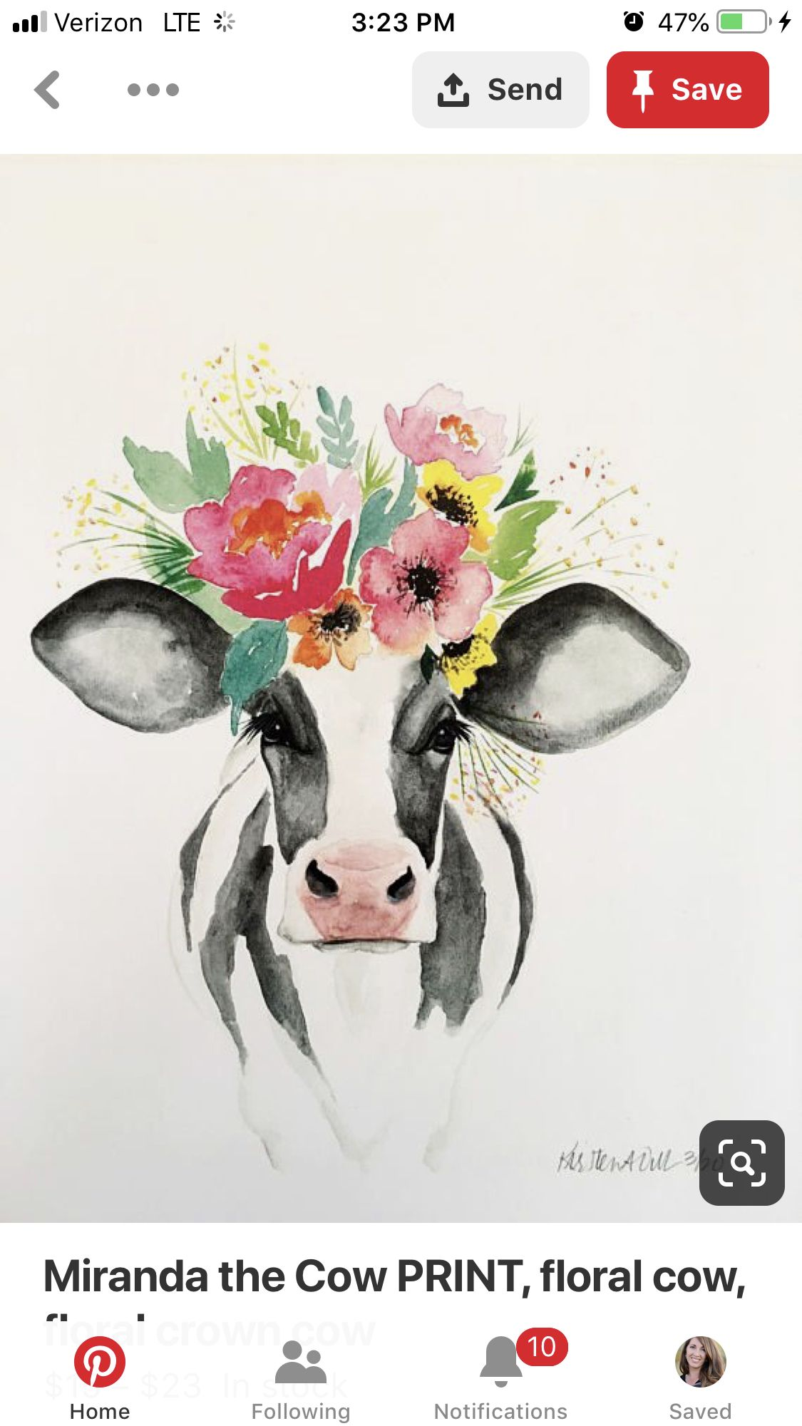 Pin by Amberlyn Prior on Art (With images) Cow art, Cow