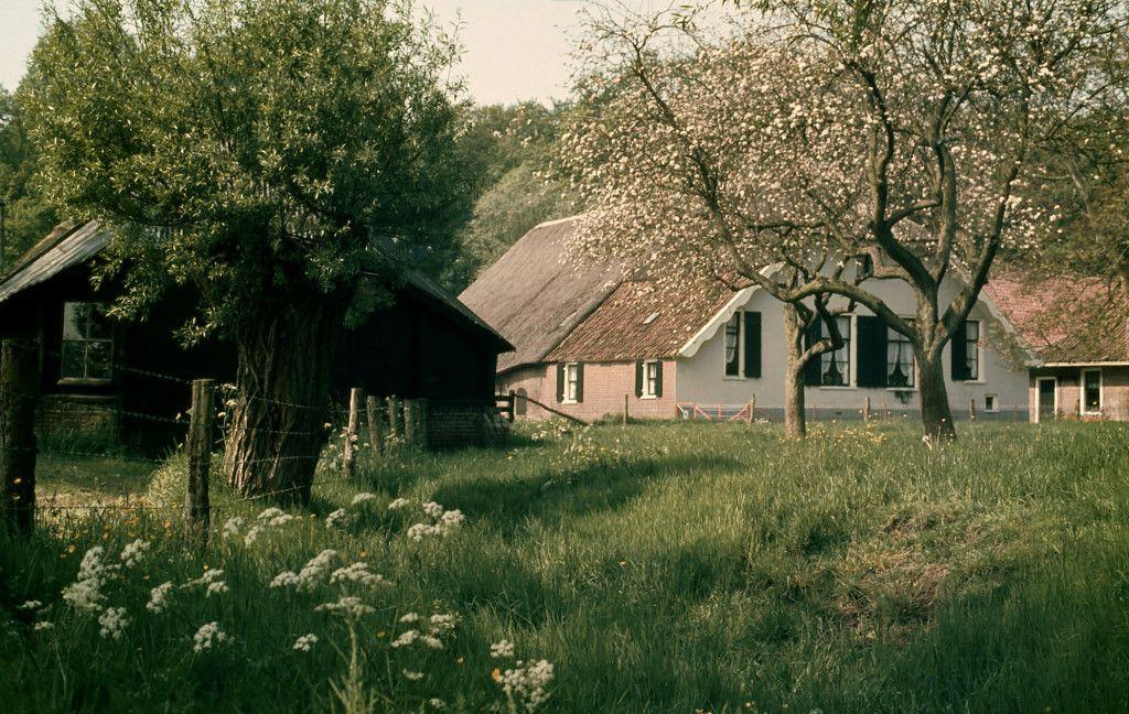 De oude boerderij groot hell foto gerrit de graaff for Woonboerderij veluwe te koop