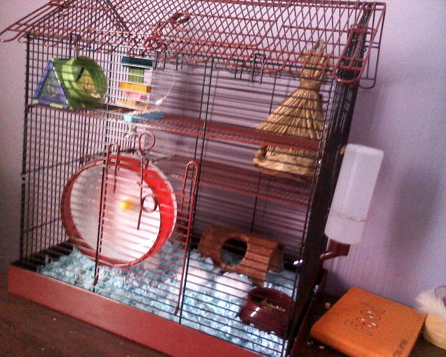 Hamster Cages For Sale Large And Small From Ideas 4 Pets Hamster Cages For Sale Hamster Cages Hamster Cage
