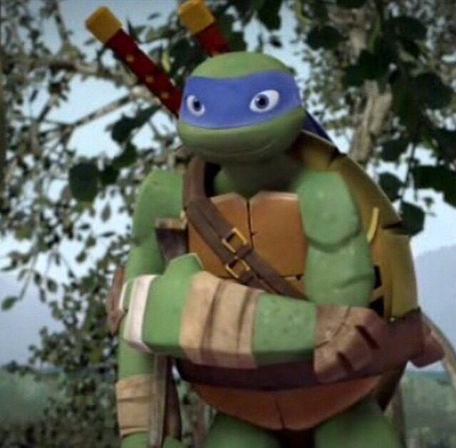 2012 *** LEO LEONARDO 2 *** TEENAGE MUTANT NINJA TURTLES TMNT