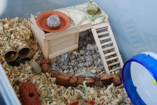 Hamster Popsicle Stick Home Cave Hamster Cage Decor