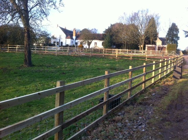 Post and Rail fencing with sheep netting   Landscaping   Sheep fence