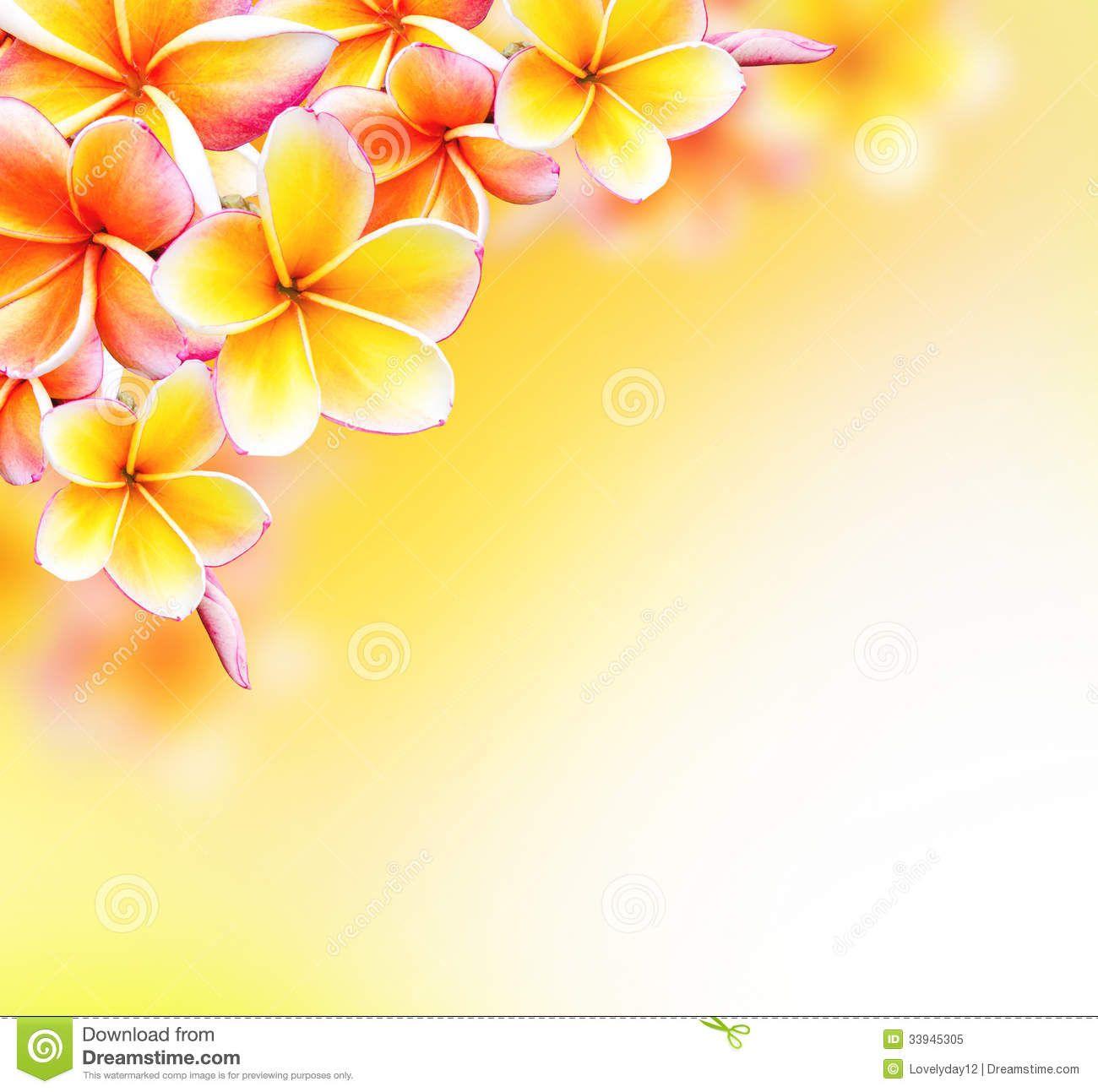 Flower Border Stock Photos – 83,655 Flower Border Stock Images ...