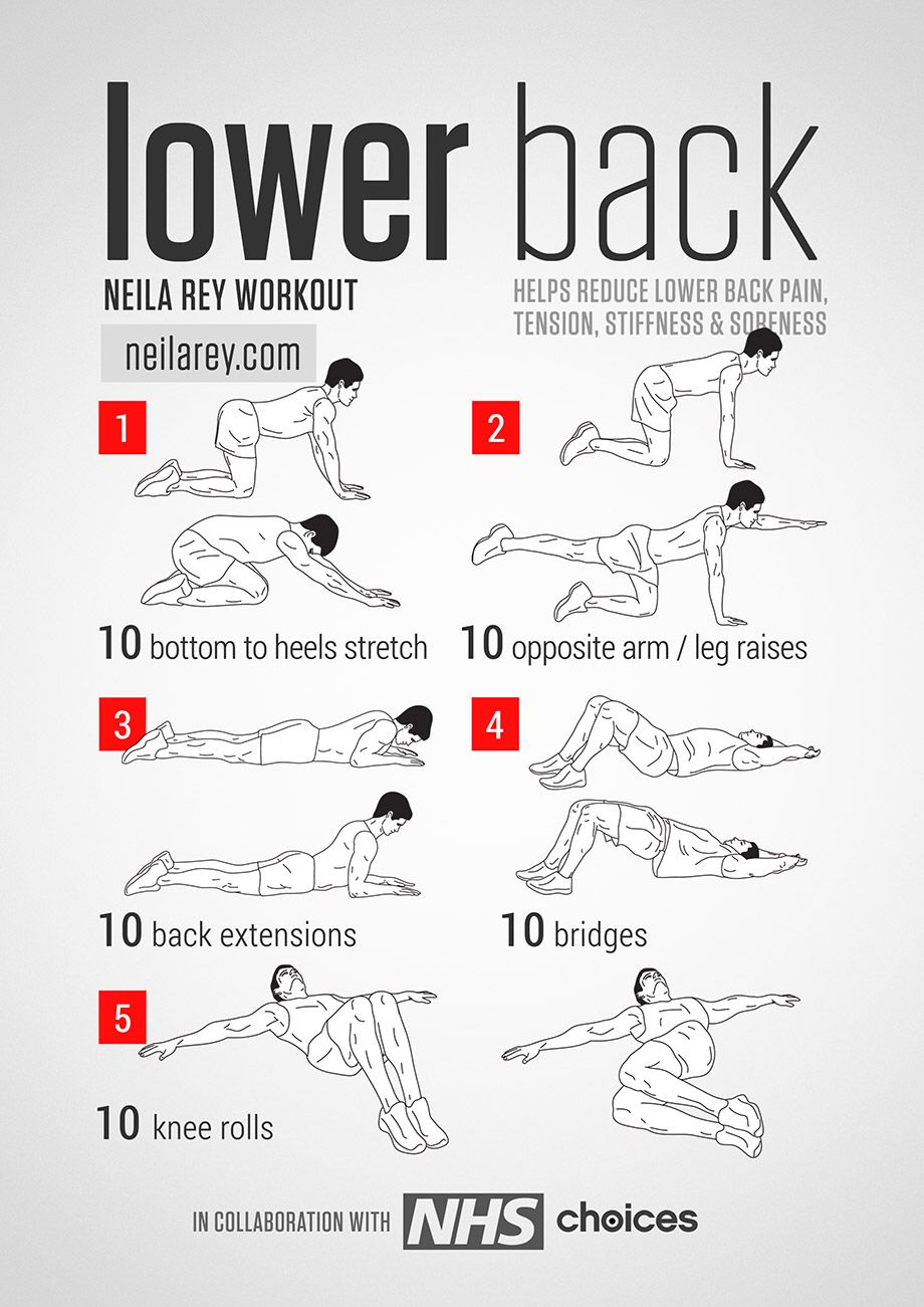 lower back workout helps reduce lower back pain tension stiffness soreness fitness workout lowerbackpain [ 920 x 1301 Pixel ]