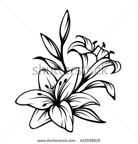 Flower black and white lily. Day clip art stock