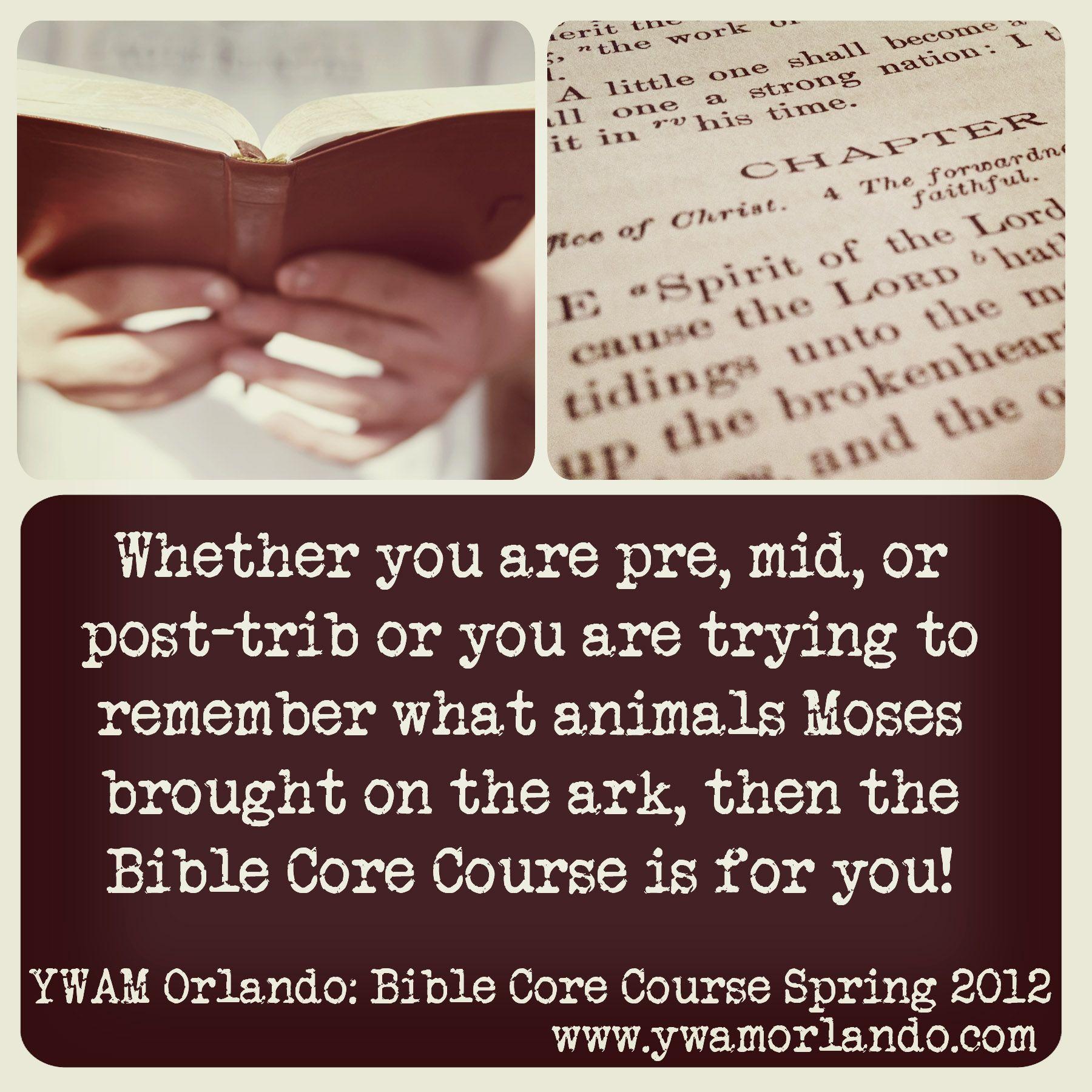 Bible Core Course @ YWAM Orlando: http://www.ywamorlando.com/traning_school_bible_core_course.aspx. Youth With A Mission | YWAM Orlando | www.ywamorlando.com
