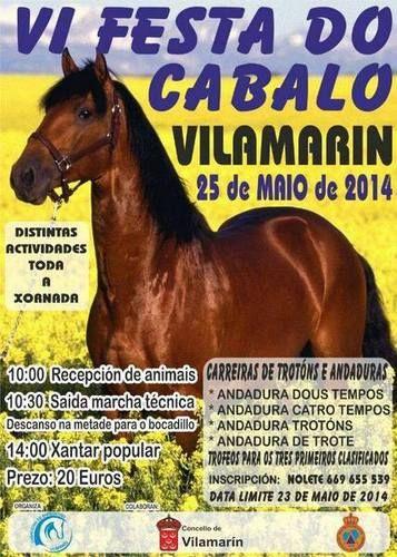 Fiesta del Caballo de Vilamarin (Ourense)