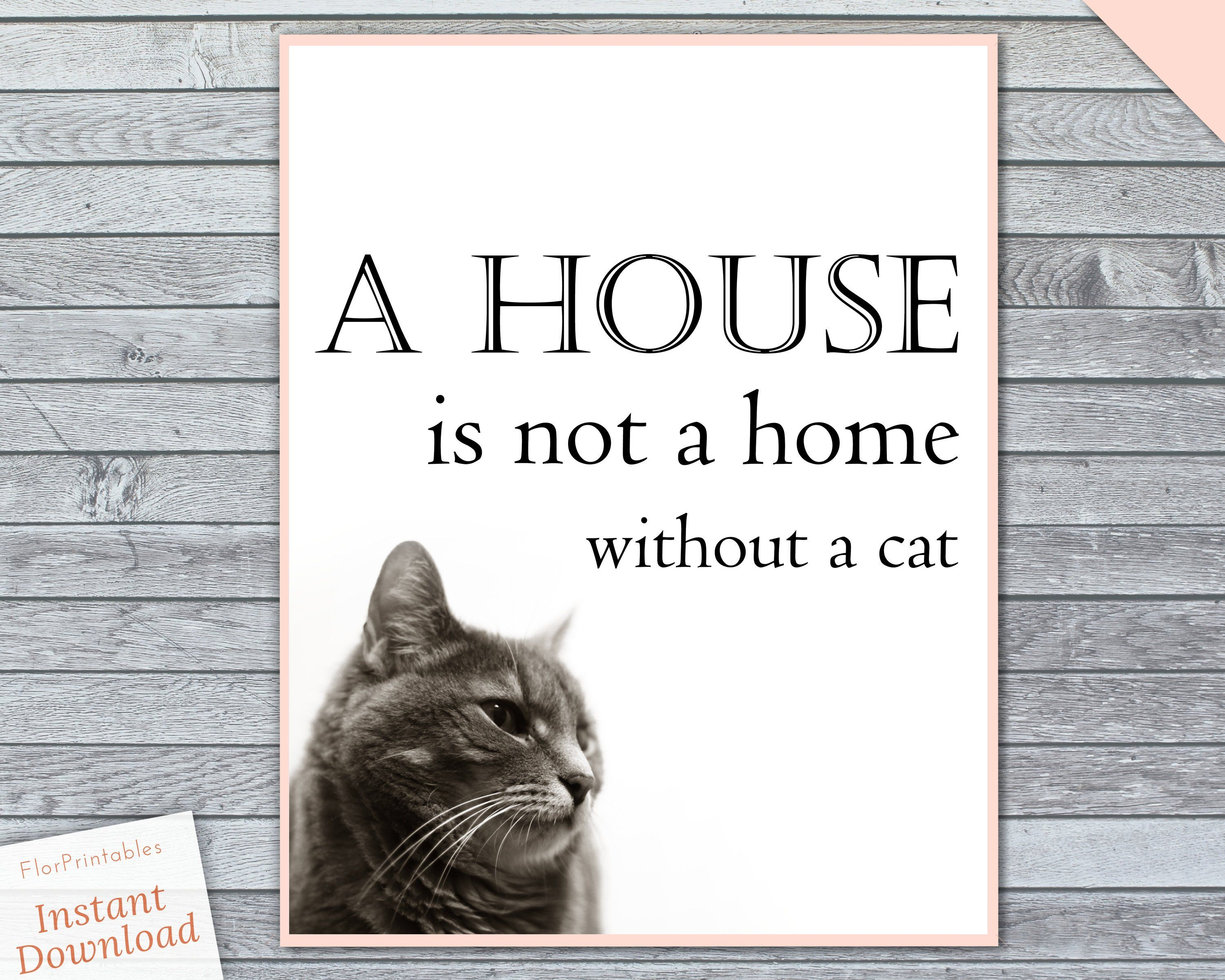 Cat Wall Art Cat Art Print A House Is Not A Home Without A Cat