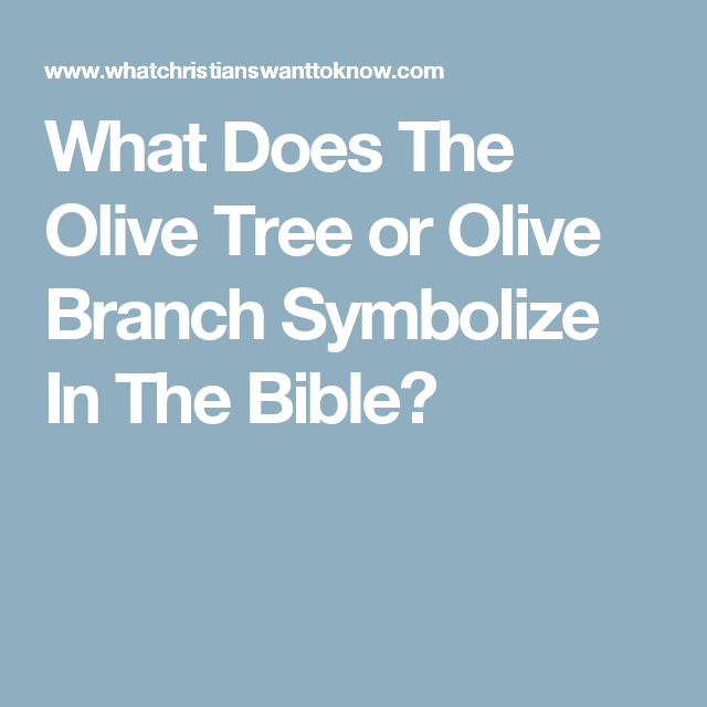 What Does The Olive Tree Or Olive Branch Symbolize In The Bible