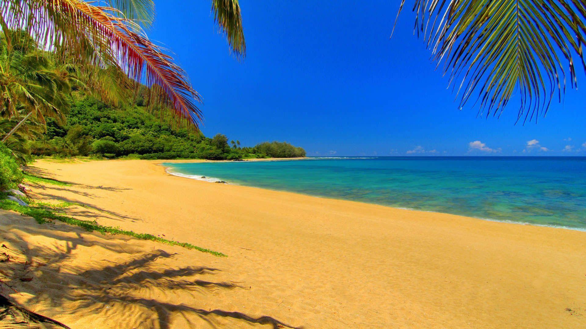 Free Desktop Cute Summer Backgrounds Beach Wallpaper Nature Beach Tunnels Beach Kauai