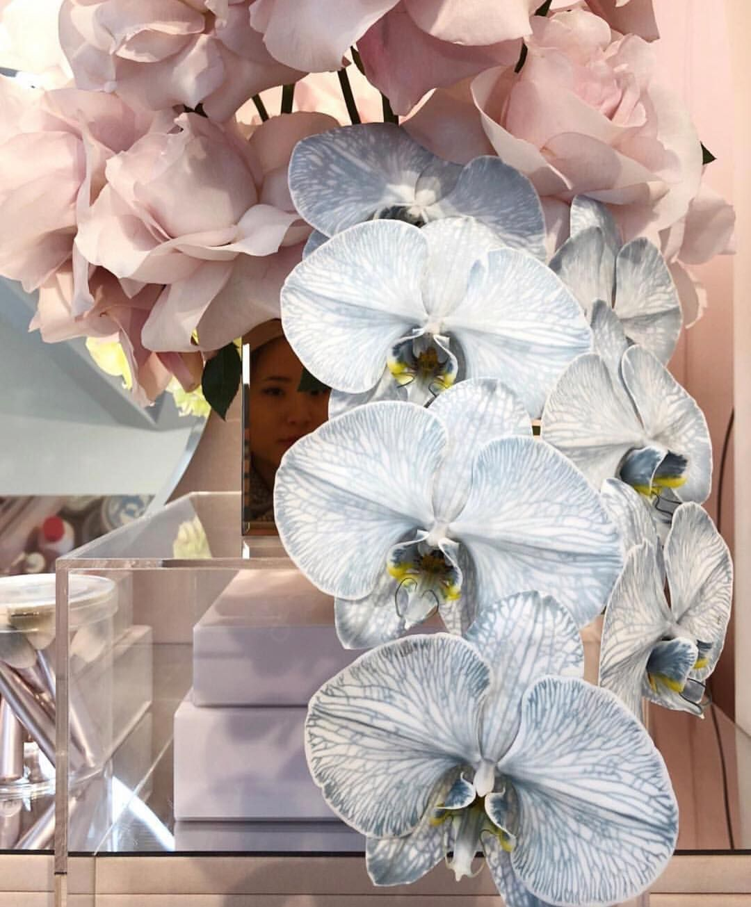 1 463 Likes 9 Comments Glossier Glossier On Instagram Baby Blue Orchids Blue Orchids Colorful Wedding Flowers Orchids