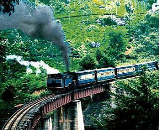 Ooty Tourist Places In Tamilnadu