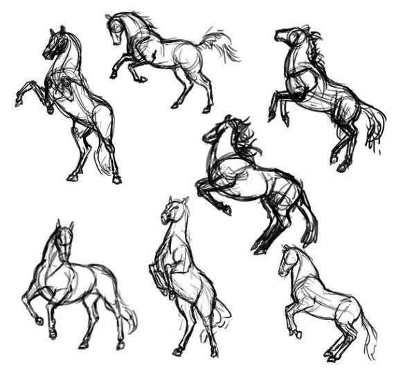 Dibujos para colorear con pincel: fotos diseños - Caballos para ...