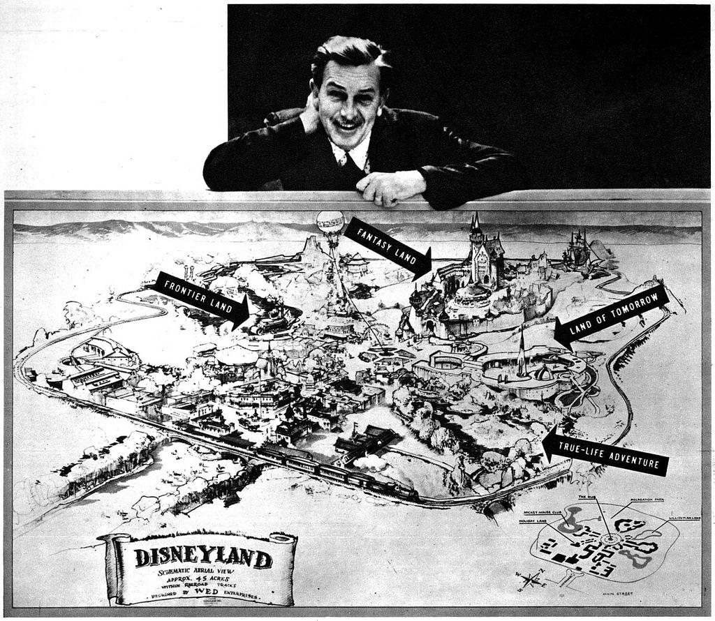1954 Vintage Photo Print Walt Disney with Plans for Disneyland
