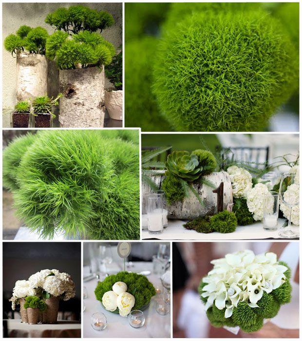 Wedding Flower Tips: Green-trick-dianthus-sweet-william-bouquet-centerpiece