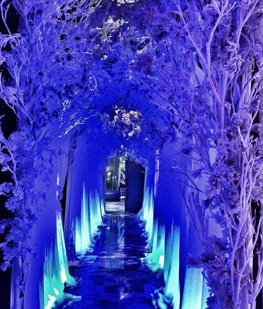 Willkommen in unserer Winterwunderland Fledermaus Mizwa! Tantawan Bloom Blumenmuster und E …   – Hannah BM