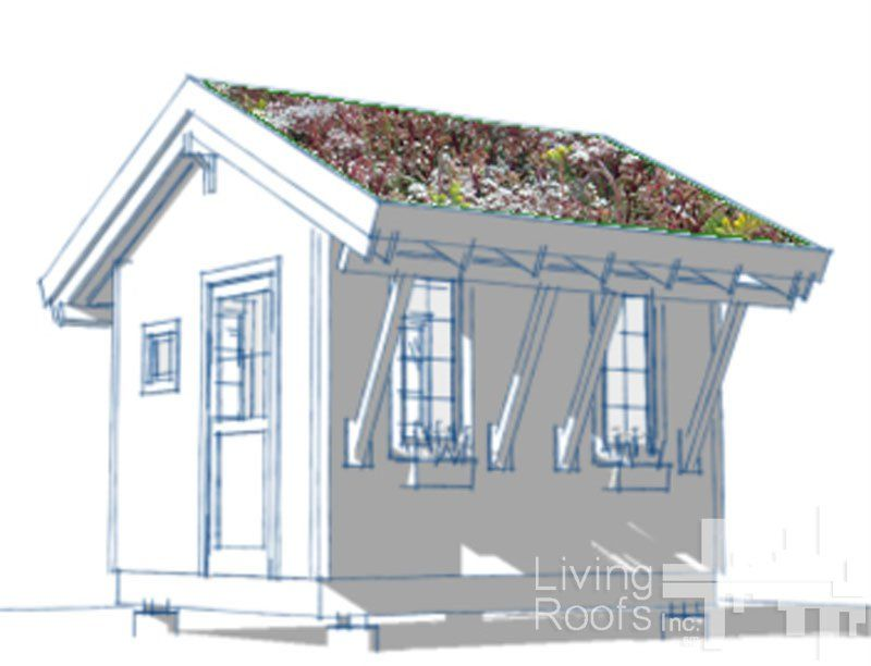 Diy Green Roof Shed Plans Living Roofs Inc Potting