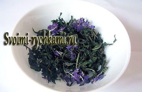 Заварка копорского чая