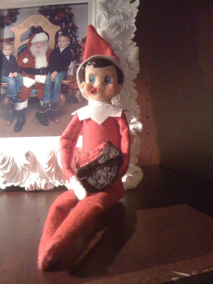 Our Elf on the Shelf, Eddy, eating a Christmas Oreo cookie.