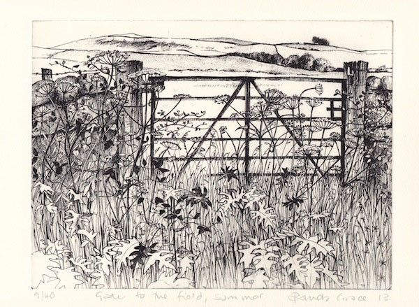 Gate to the Field, Summer by Pamela Grace hand coloured solar plate etching