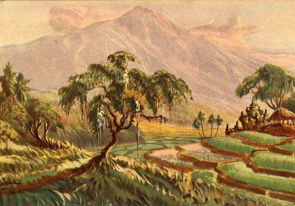 Pemandangan Sawah Dan Gunung Di Jawa Tengah 1920 1940 Pemandangan Painting Gambar
