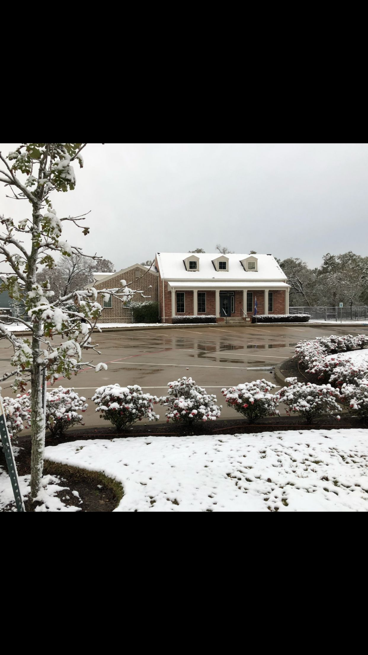 Angela Johnson Insurance Agency Office In The Snow Friendswood