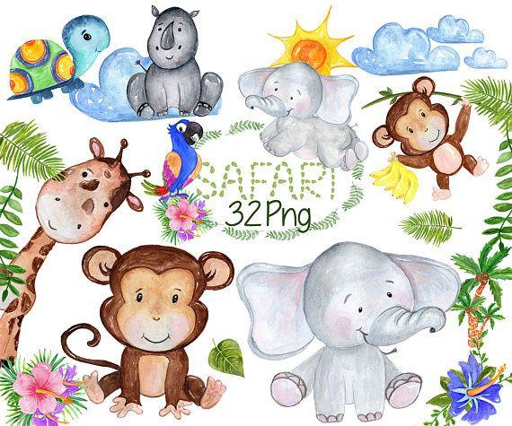 Safari Animals Clipart African Animals Watercolor Animals