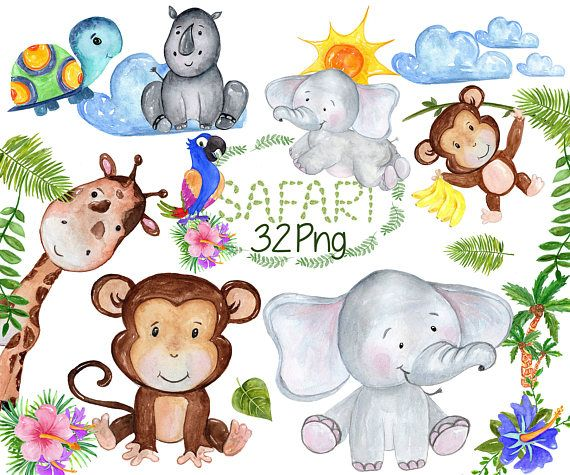 Safari Animals Clipart African Animals Watercolor Animals