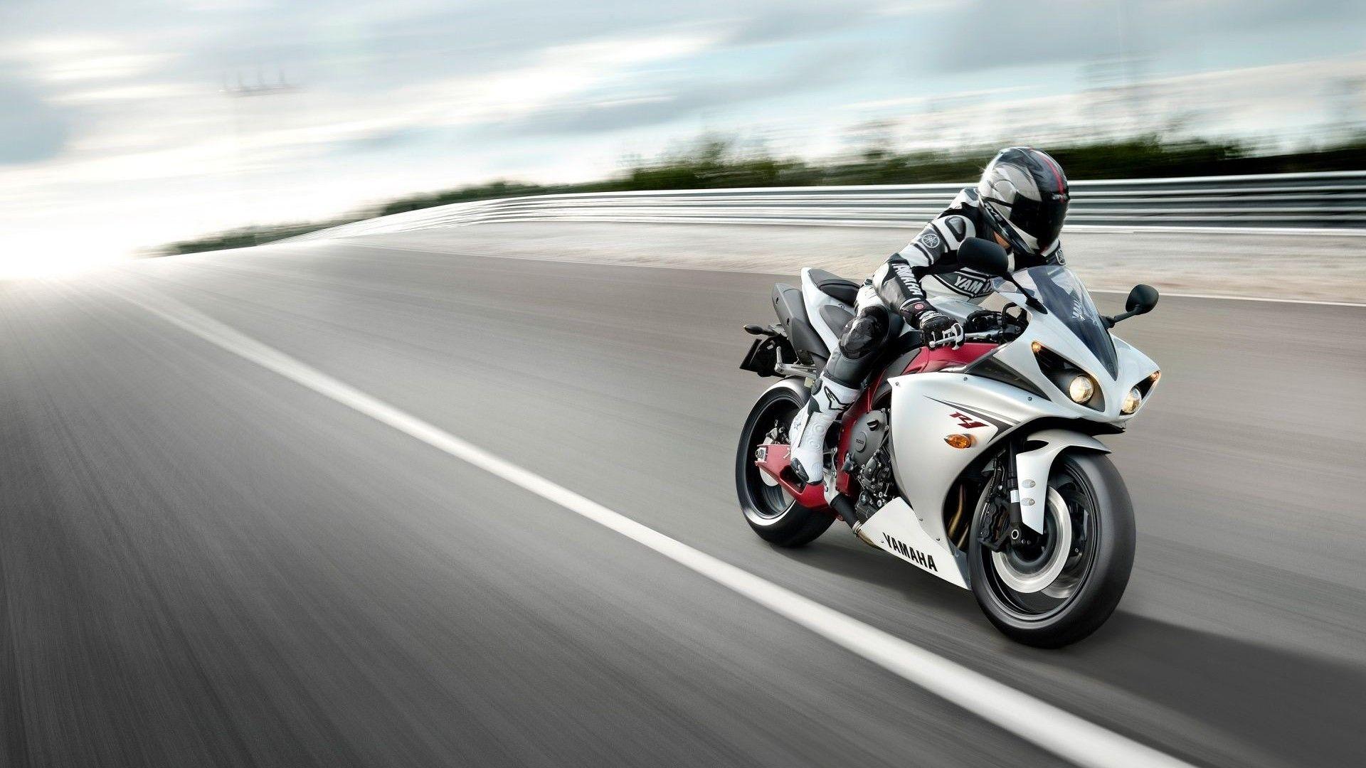 дают картинки с мотоциклами на телефон кошка