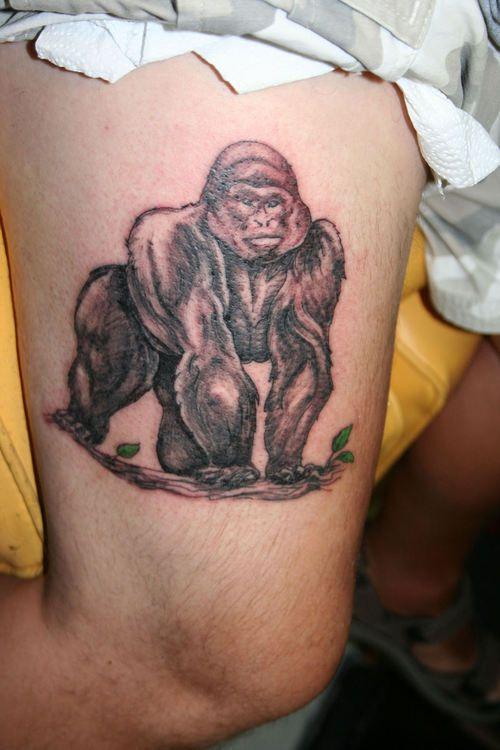 silver back gorilla tattoo tattoos pinterest gorilla tattoo tattoo and tattoo traditional. Black Bedroom Furniture Sets. Home Design Ideas
