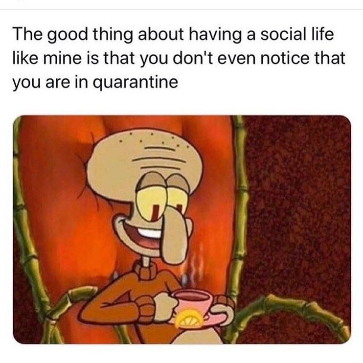 Meme S Quotes Memes Its Memes Laughing Memes Memes Quotes Funnie Memes I Meme Truthful Memes Happy Funny Spongebob Memes Funny Pictures Spongebob Memes